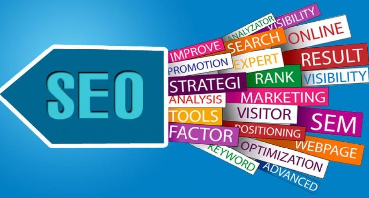 you will never believe these bizzare truth of seo